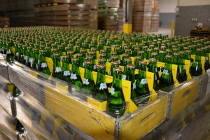 Ale-8-One Factory Tours are Family Friendly - photo by Michael Dwyer