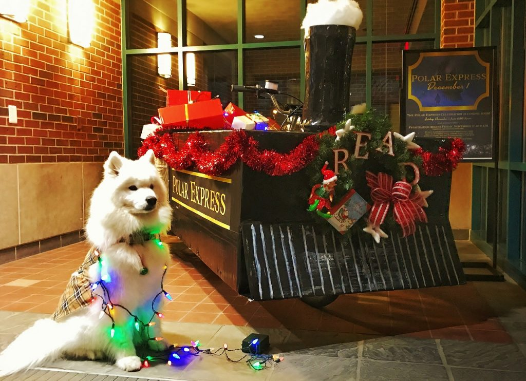 Abby the dog sits next to the car-size polar express train model in the lobby area of the library with holiday decorations around.