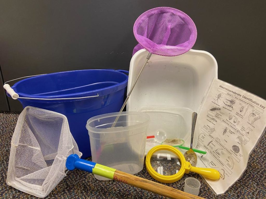 Nets, buckets, and magnifying glasses.